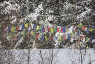 Tibetan prayer flags in the snowy woods